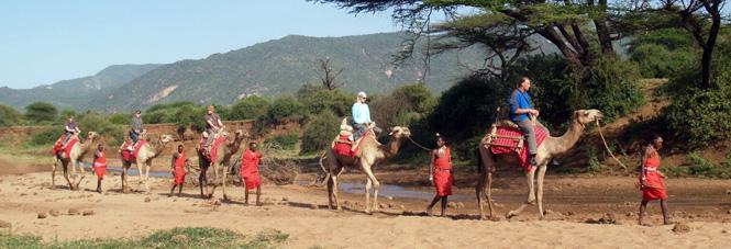 camel-adventure_reflekt_665