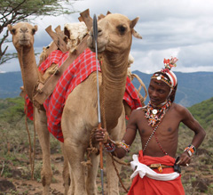 camel_maasai_moran_b_240